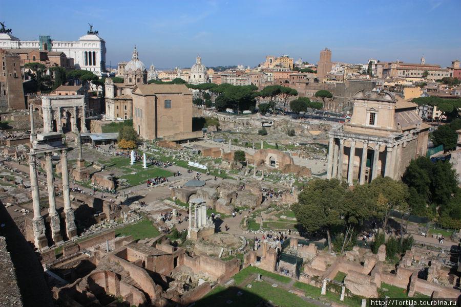 Рим. Палатин. Вид на Фору