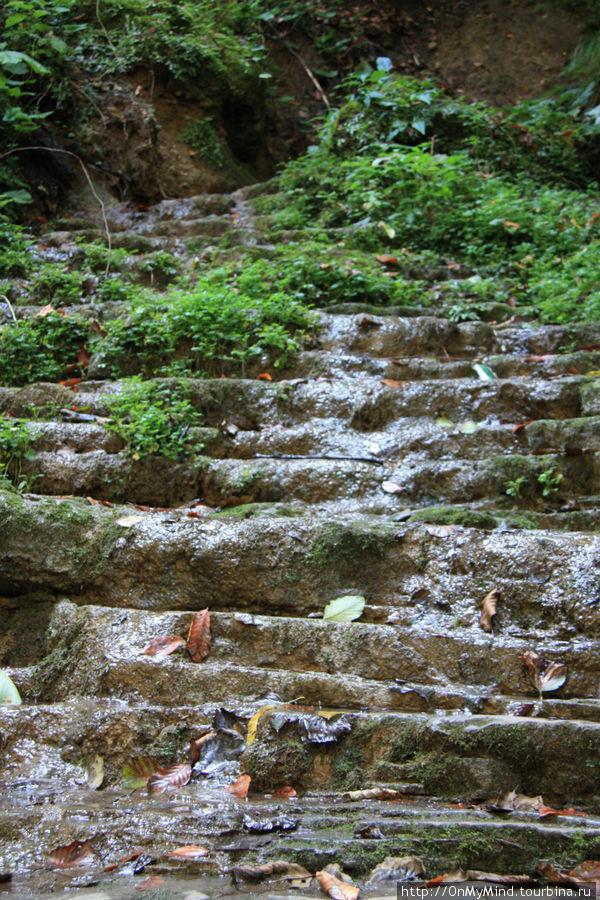 по дороге к водопадам