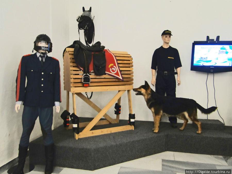 Современность чешской полиции
