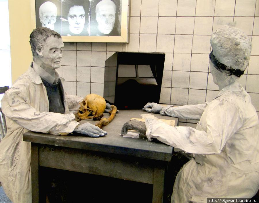 Кстати, эту область исследований для криминалистики открыл наш ученый Михаил Герасимов, автор метода восстановления внешнего облика человека по скелетным останкам. Именно он воссоздал облик Ивана Грозного по его черепу