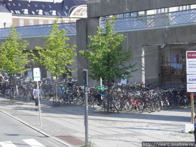Велосипеды — излюбленный вид транспорта. Стоянки для них организованы повсеместно.