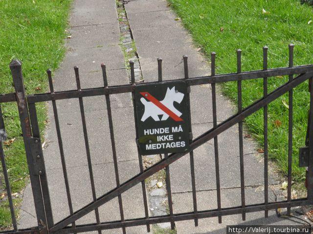 Собакам здесь нельзя ...
