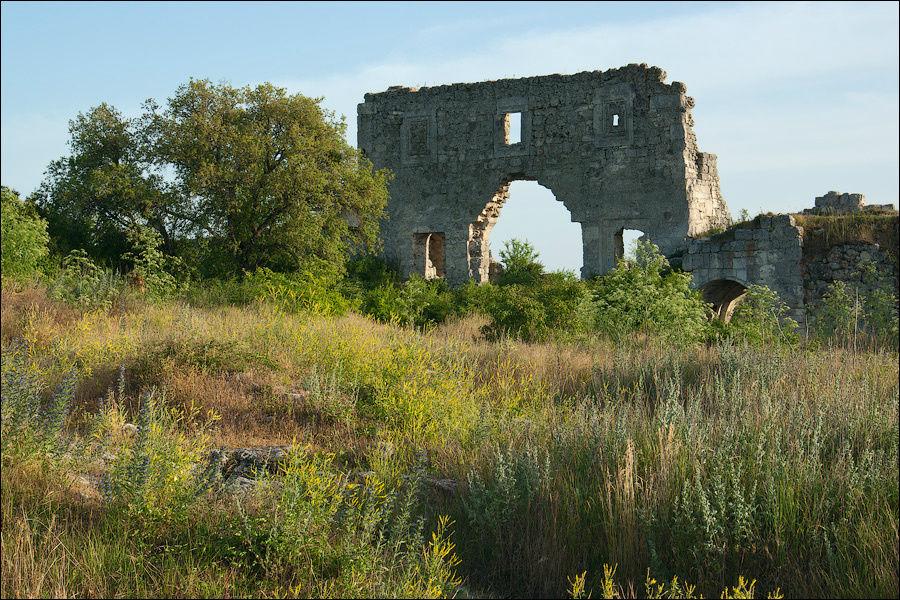 Июнь 2007 г. В левом углу, в траве, спрятался колодец цитадели.