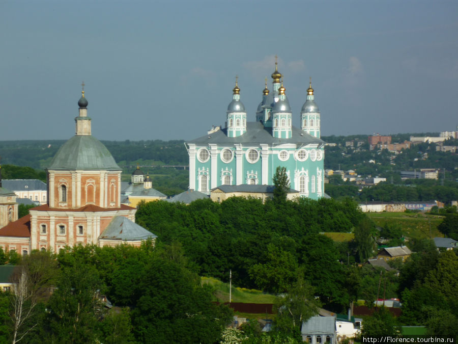 Вид на собор со Смоленской стены