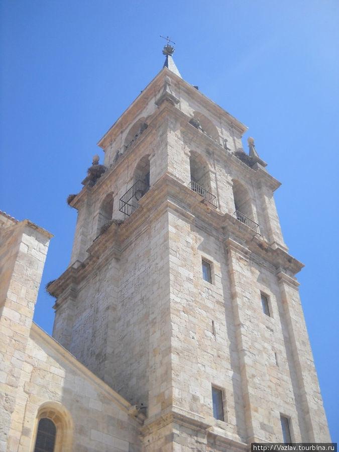 Башня собора