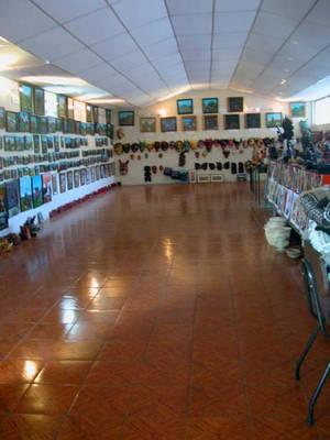 Галерея Тигуа