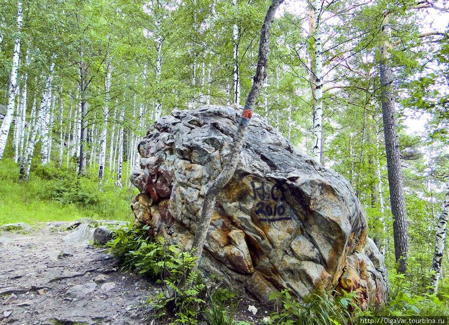Чем дальше в лес, тем больше не только дров, но и камней