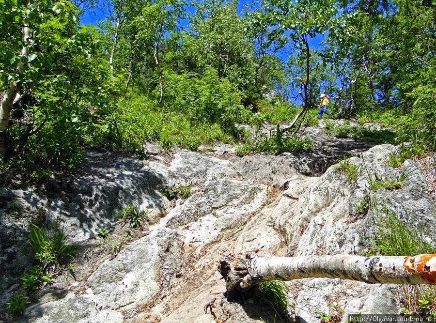 Русло каменной реки. В некоторых местах по такой полированной поверхности практически не пройти