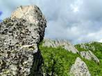 А в этой скале я увидела огромного птенца, вглядывающегося в небо в ожидании, когда вернутся родители