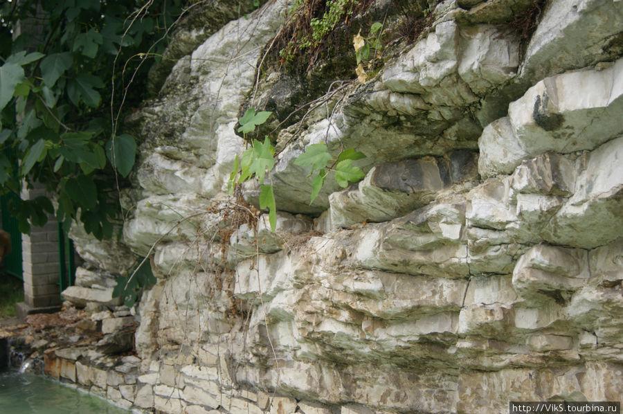 Из-под этой скалы вытекает источник.