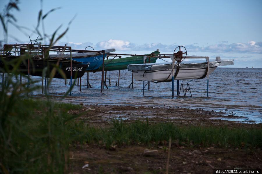 ладожское озеро аренда лодок шлиссельбург