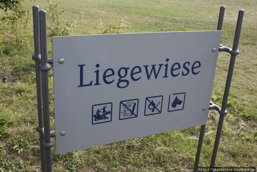 Лежать на газоне разрешено!