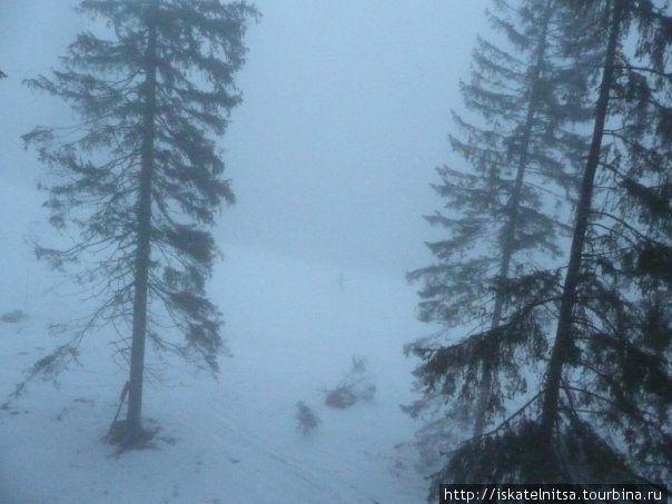 Едва заметное в тумане пятнышко — лыжник