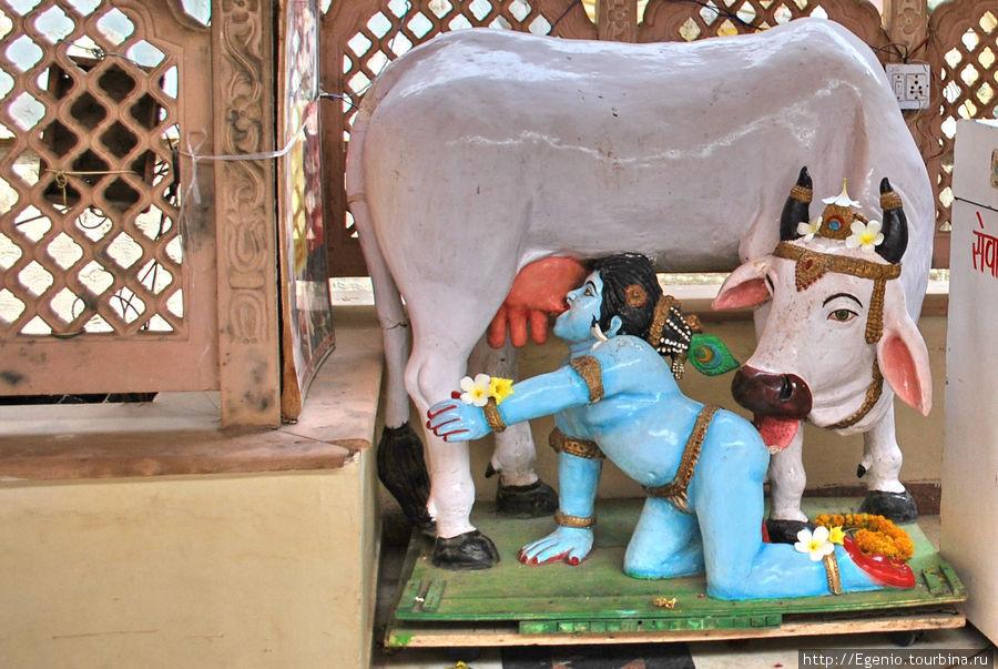 в кришнаитском храме, в котором фоткать запрещено :)