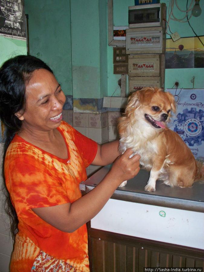 Менеджер мотеля со своей любимой собачкой