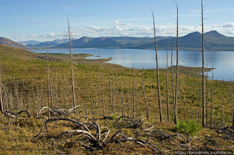 В северной части озера примерно пятнадцать лет назад случился обширный пожар. Природа с тех пор ещё не восстановилась.