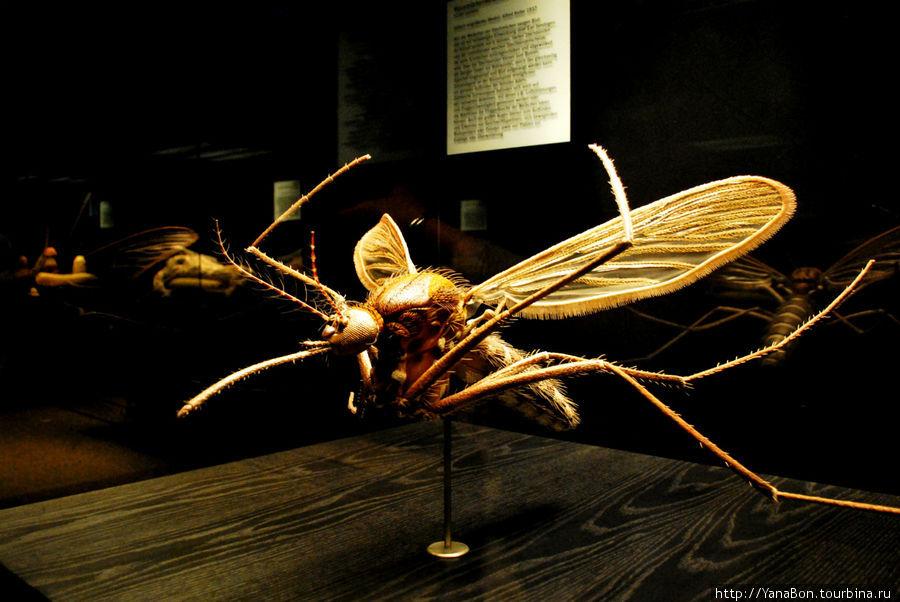 Гигантский макет самки комара
