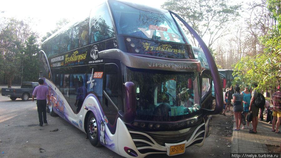 Вот на таких шикарных автобусах возят в Тайланде на экскурсии.