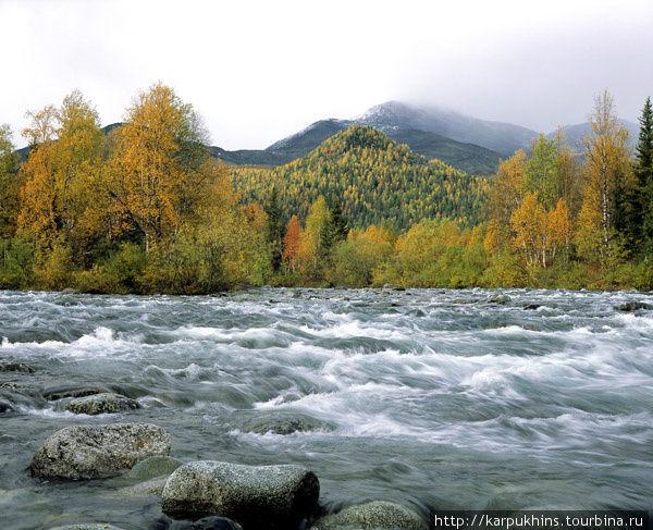 Осень на реке Парнук. Осенью на Парнуке всё совсем по-другому. Изменилась не только природа, не только пейзажи, но и внутренние ощущения от соприкосновения с этим миром, от взаимопроникновения с ним. Здесь, всё так же, прямо в створе реки видна каменистая гора Рума, на её фоне лесистая гора Шамок и всё это дополнено камнями и быстрой водой реки в лесных берегах. Замечательная композиция всё так же восхищает, но теперь это всё совсем в другом цветовом решении. И теперь это всё выглядит вроде бы более ярко и празднично, но во всём сквозит какая-то непонятная грусть увядания и прощания с коротким полярным летом. Этот сюжет снимался чуть ниже острова.