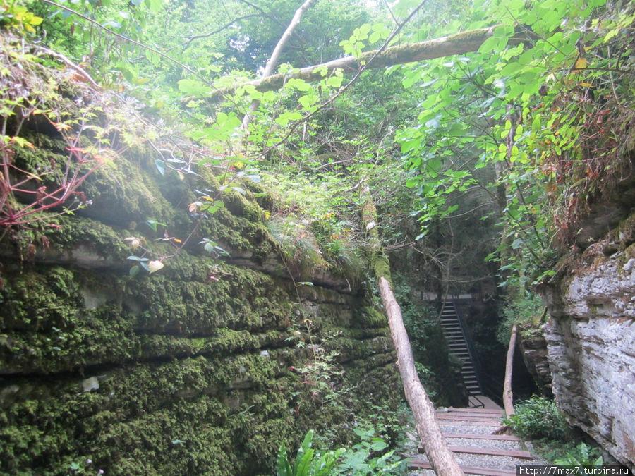 В результате разрушительной деятельности воды и тектонических сил,длившихся веками, в толще известняка образовались естественные коридоры