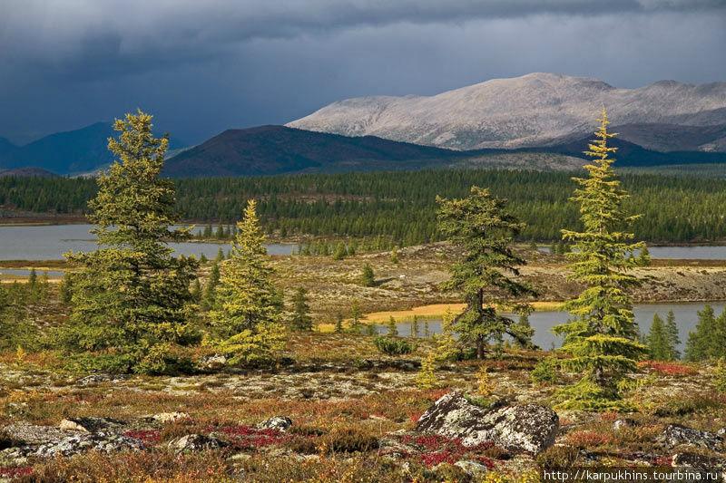 Поблизости от озера Момонтай разбросано множество небольших, но очень живописных озёр. Их тут целая озёрная система, соединённых между собой протоками. Такой ландшафтный облик обязан своим происхождением ледниковому периоду. Именно тогда властвующий над этой территорией ледник перетирал в труху своей огромной массой граниты, которыми сложены местные горы и громоздил из них моренные холмы, между которыми и образовались современные озёра.