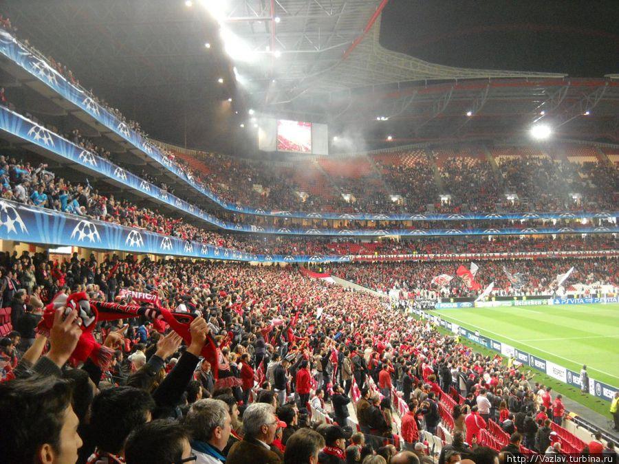 Фрагмент стадиона