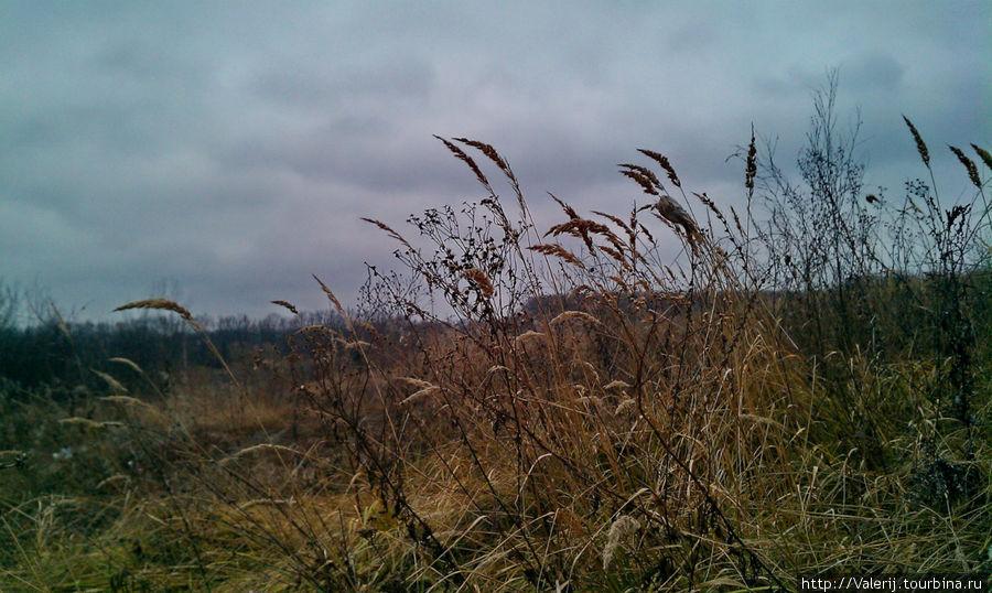 Картинки поля поздней осенью