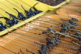 скорпиончики- ух вкусняшка