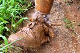 Так и ходим — в грязи по колено