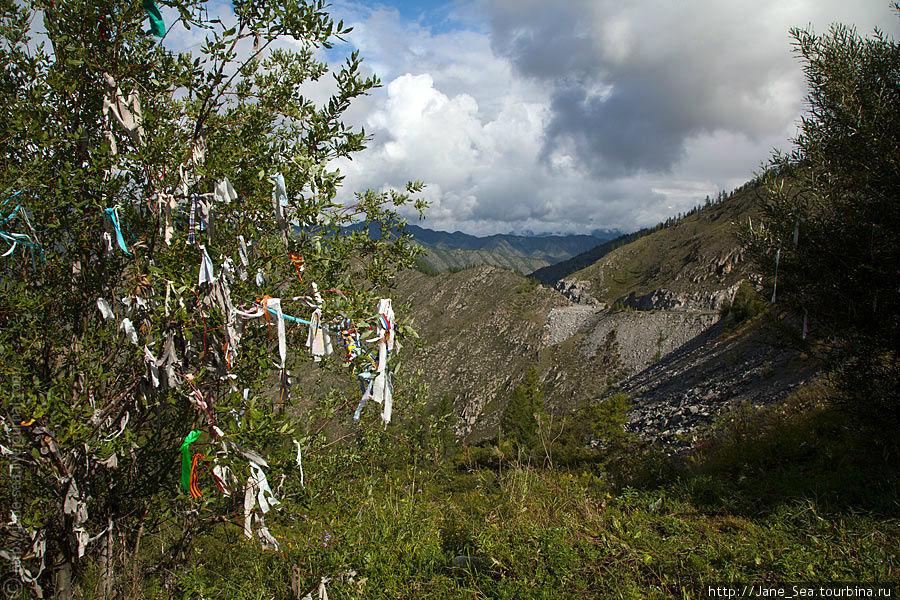 Ритуальные ленточки кыйра на перевале Чике-Таман. Разного цвета ленты предназначены для разных целей.