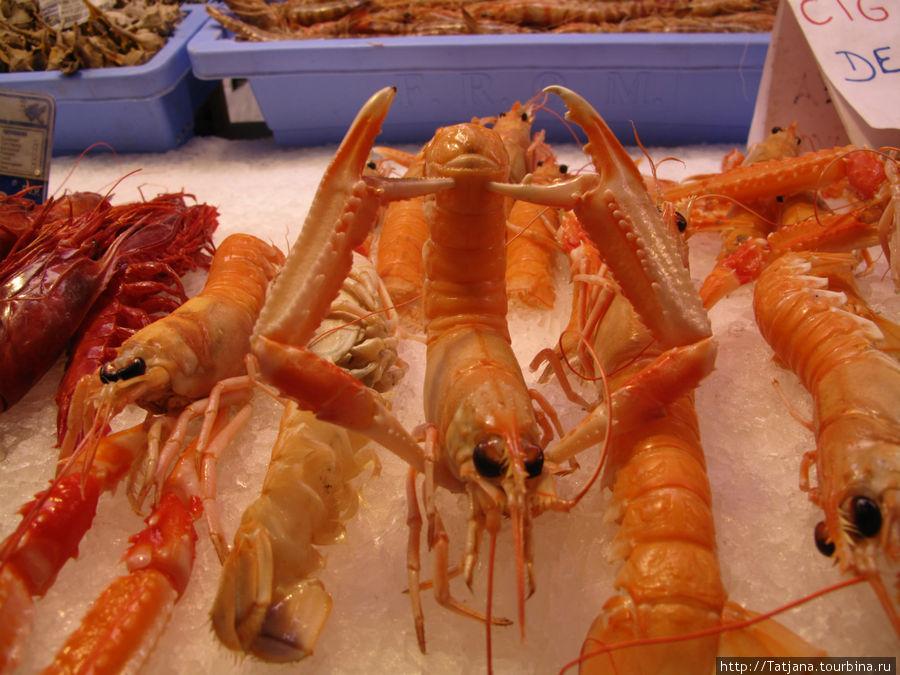 морепродукт