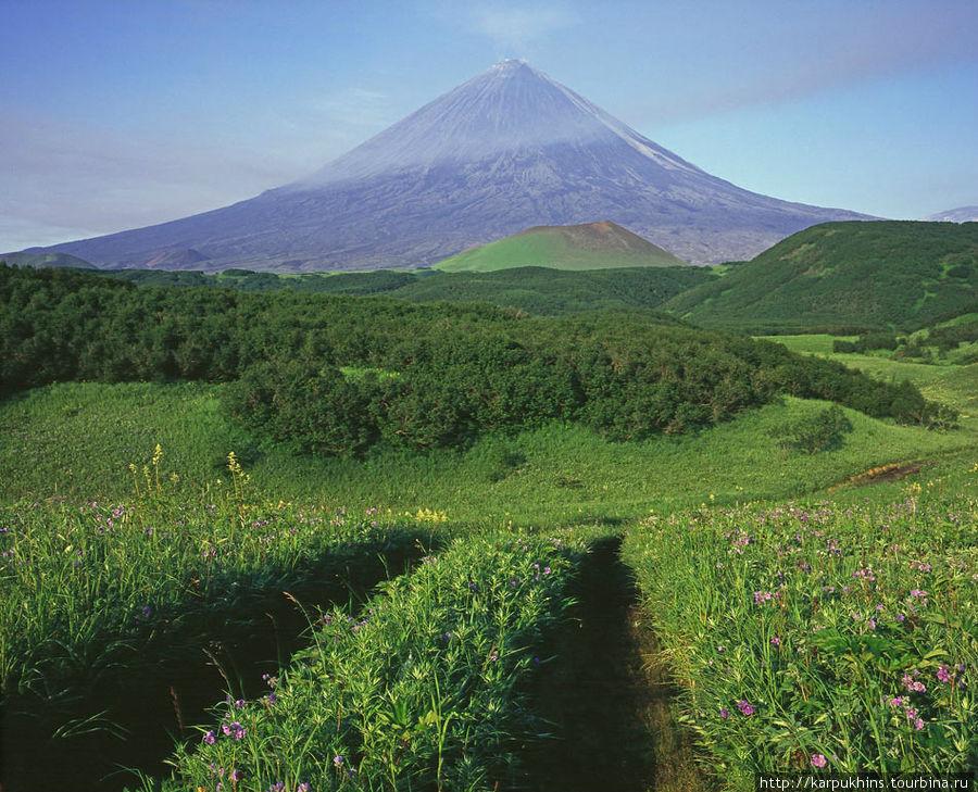 Дорога к вулкану.