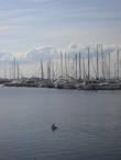 Панорама гавани