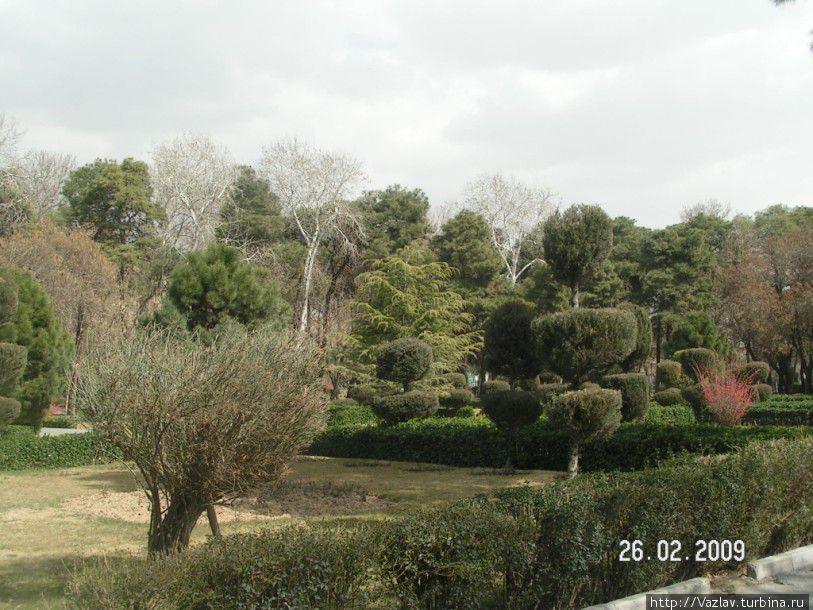 Парковый пейзаж