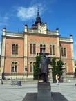 Владычанский двор и памятник сербскому поэту Йованй Йовановичу Змею. Кстати,