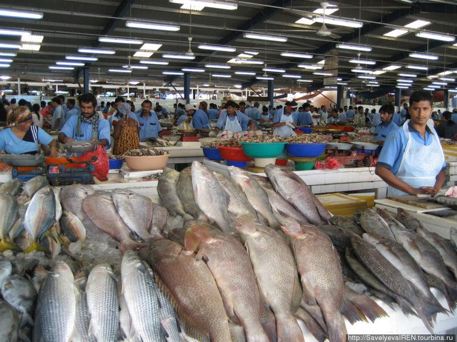 Рыбный рынок огромных размеров.