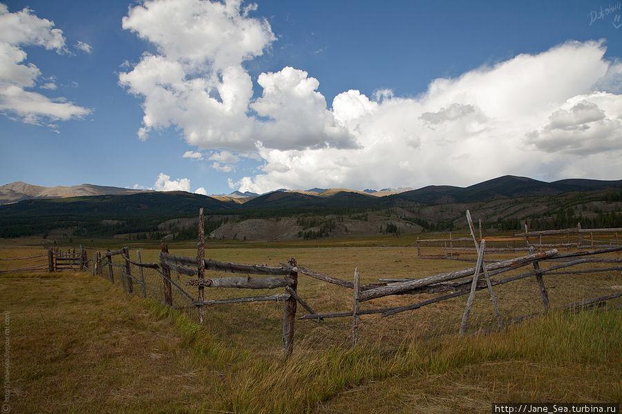 Вид на Южно-Чуйский хребет со двора турбазы.