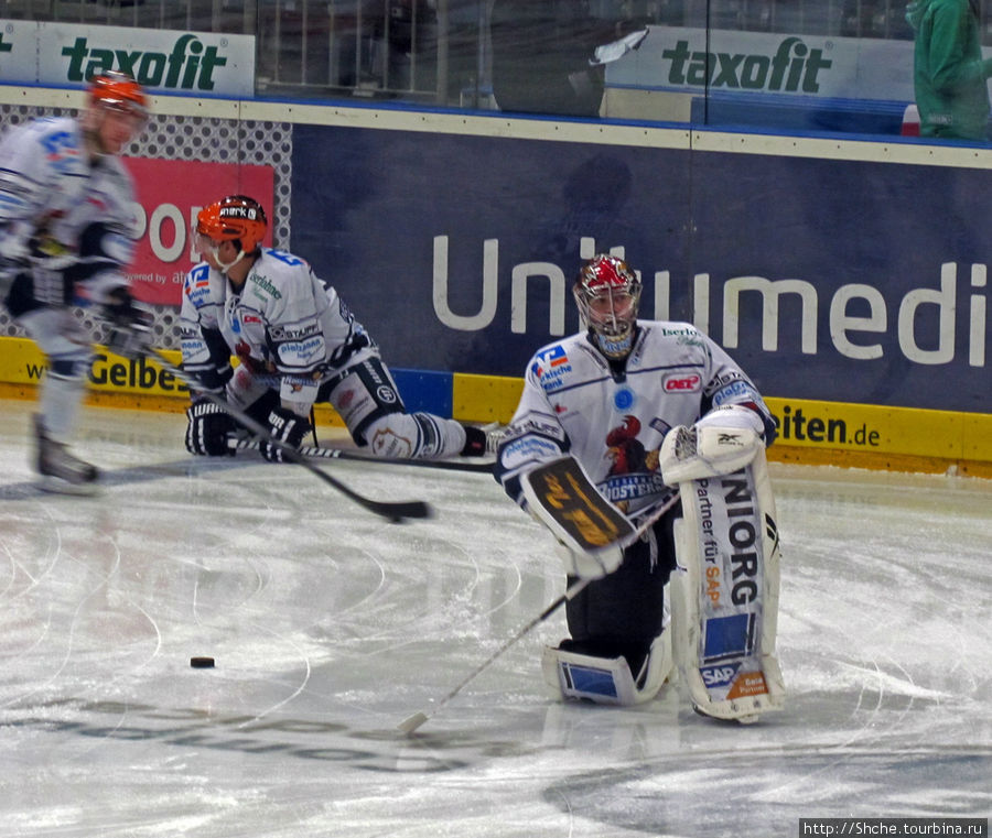Примерно минут за 40 до начала на лед вышли размяться хоккеисты