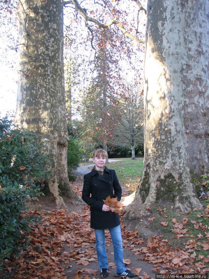 Парк замка Азе-ле-Ридо