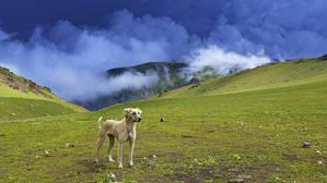 Плато Сандыктас. Киргизский хребет