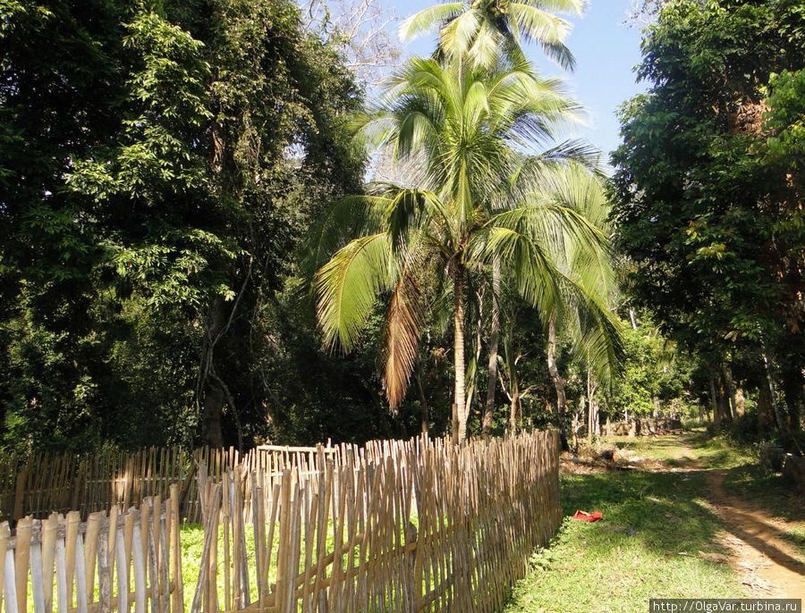 Деревенская идиллия по-лаосски Бан-Пак-Оу, Лаос