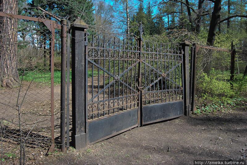Одни из ворот ботанического сада, очень готичные