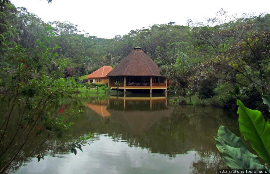 Ресторан окружен водой