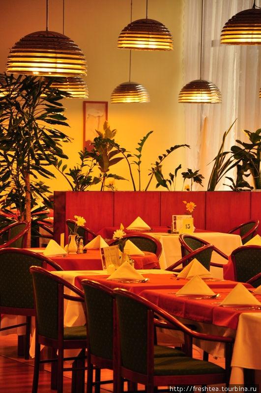 Один из ресторанов отеля, где завтраки в форме буфета, а основное блюдо на обед и ужин заказывают по меню.