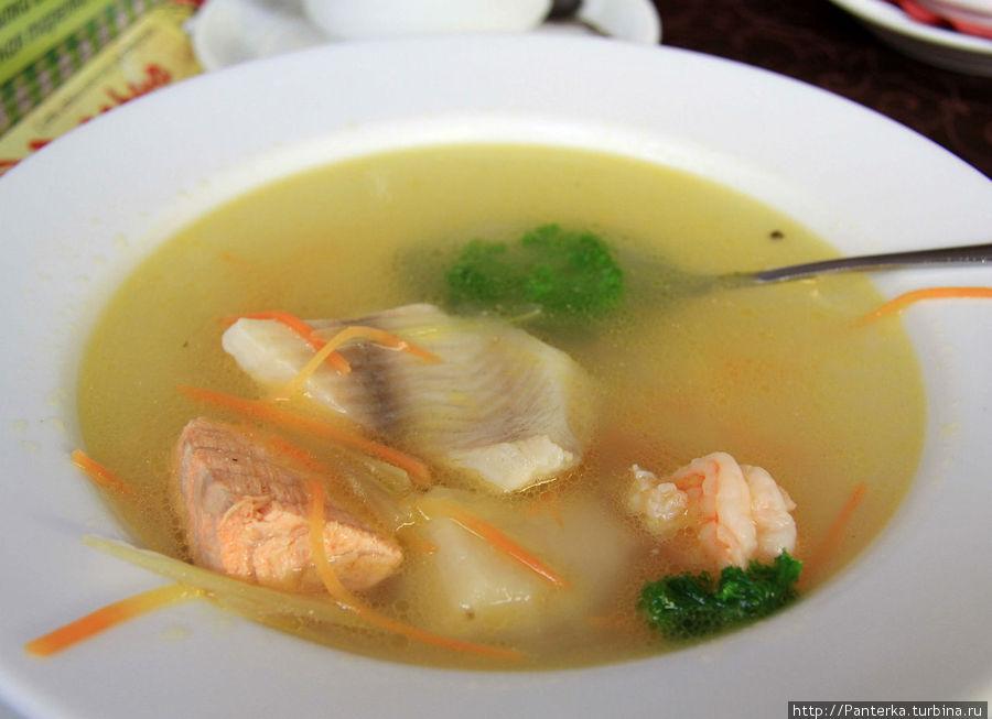 Донативо — мой любимый суп в Розарио