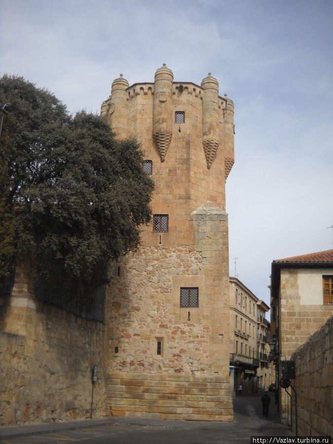 Внешний вид башни