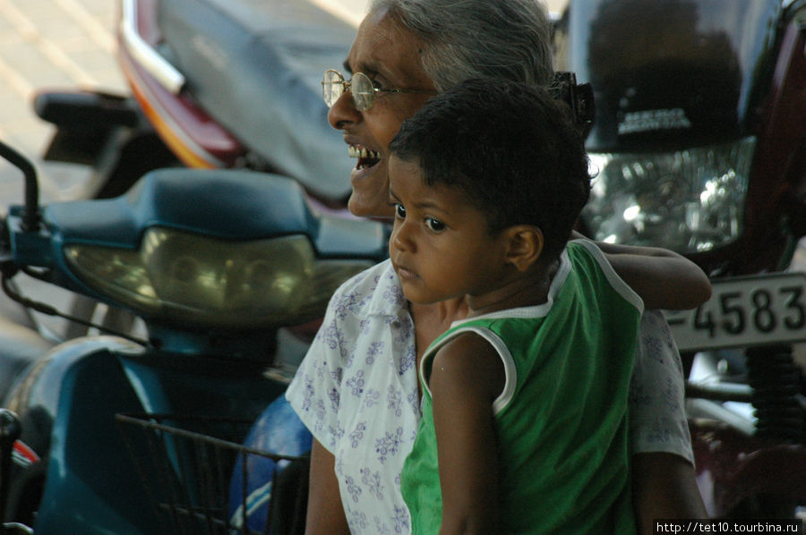 жить — хорошо! Тангалла, Шри-Ланка