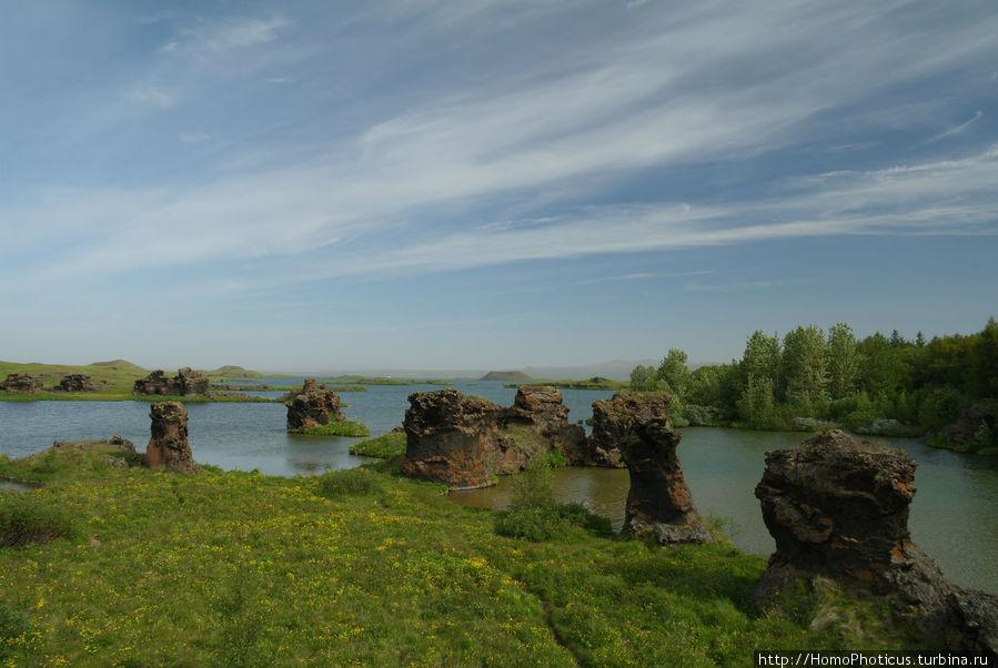 Калфастрёнд: лавовые скульптуры Скутустадир, Исландия