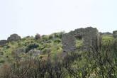 Античные строения Селинуса