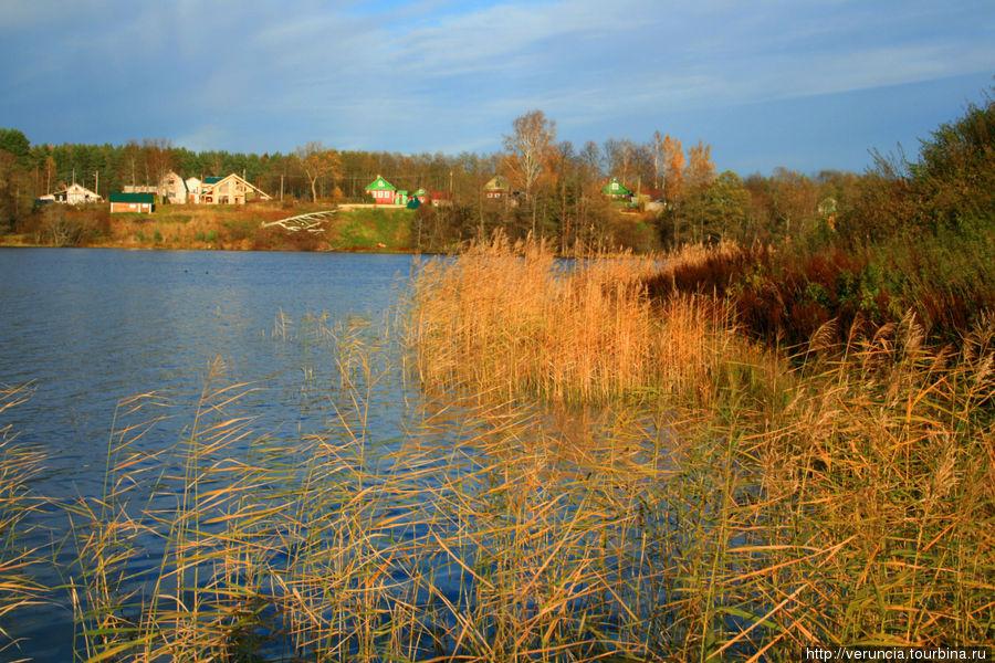 Рощинское озеро со стороны Преображенского ансамбля, вид на деревню